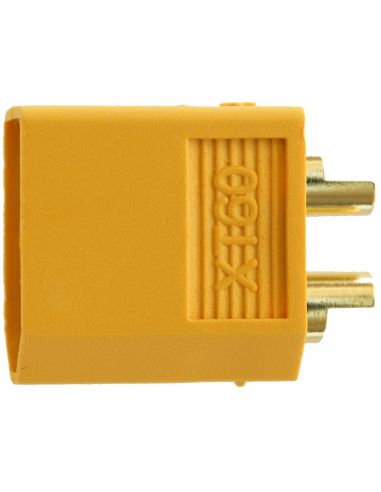 XT 60 Goldstecker, 81324