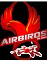 Airbirds